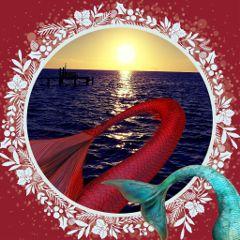 colorsplash mermaidlife