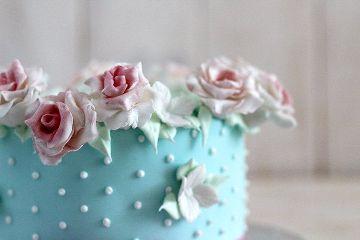 photography cakepuntcom sweet colors cake