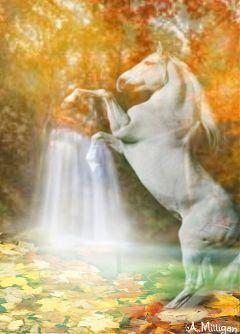 wapautumnvibes colorful horse waterfalls trees