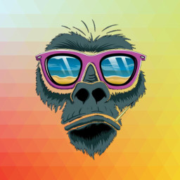 beach colorful pencilart freetoedit monkey
