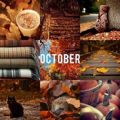 freetoedit octoberbaby autumncolors lovefall lovenature