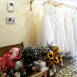 white dresswedding