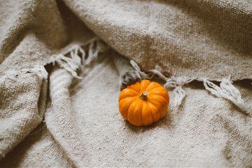 freetoedit pumkin holiday autumn halloween